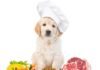best meals for dogs